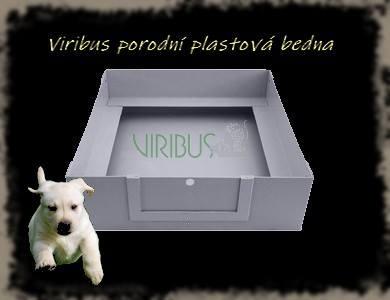 Porodní box