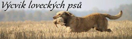 Výsvik loveckých psů